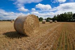Um haybale após a colheita imagens de stock royalty free