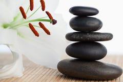 Um hibiscus branco ao lado de uma pilha de pedras pretas Imagens de Stock
