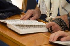 Um homem adulto que aponta em uma frase em um torah do sefer do livro da Bíblia, ao ler rezar imagem de stock