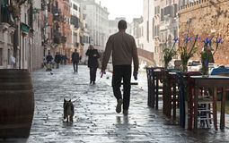 Um homem anda seu cão em Cannareggio, Veneza Fotografia de Stock Royalty Free