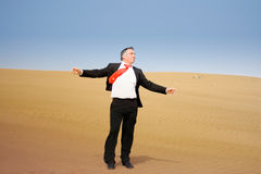 Um homem de negócio que grita Foto de Stock