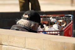 Um homem desabrigado que senta-se em um banco com carro de compra Imagens de Stock