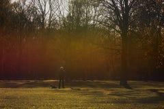Um homem e seu cão em um parque fotografia de stock royalty free