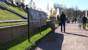 Um homem está pelo suporte com os cartazes no parque vídeos de arquivo