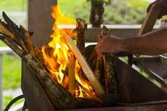 Um homem joga uma árvore no fogo Foto de Stock Royalty Free