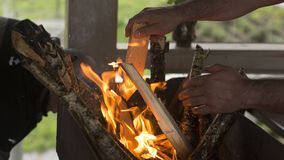 Um homem joga uma árvore no fogo Imagens de Stock