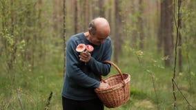 Um homem maduro com a cesta na floresta realiza em suas mãos diversos cogumelos video estoque