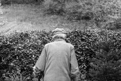 Um homem mais idoso está andando na estrada Está andando afastado Imagens de Stock Royalty Free