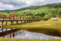 Um homem na ponte, Fotografia de Stock