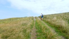 Um homem novo anda com um cão ao longo da costa de mar video estoque