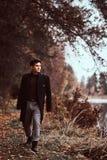 Um homem novo considerável que anda na floresta do outono imagens de stock