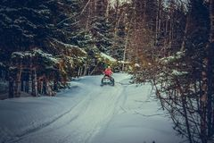 Um homem novo em passeios de um carro de neve através das madeiras fotografia de stock royalty free