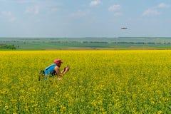 Um homem novo em um tampão vermelho e em um t-shirt azul lança um zangão em um campo amarelo das flores em um dia ensolarado fotografia de stock royalty free