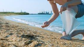 Um homem novo recolhe shell em um saco de plástico na praia filme