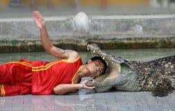 Um homem põr sua cabeça na boca do crocodilo Fotos de Stock