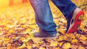 Um homem para de andar O ` s da amiga do ` s da menina Meninas quentes na natureza no parque entre as folhas do amarelo outono Imagens de Stock