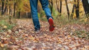 Um homem para de andar O ` s da amiga do ` s da menina Meninas quentes na natureza no parque entre as folhas do amarelo outono Imagens de Stock Royalty Free