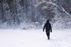 Um homem só anda na neve Silhueta dramática de um homem que anda em um esclarecimento nevado na floresta friamente fotos de stock