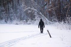 Um homem só anda na neve Silhueta dramática de um homem que anda em um esclarecimento nevado na floresta friamente fotografia de stock