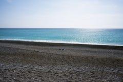 Um homem solitário em um Pebble Beach abandonado no Cote d'Azur Resto e abrandamento pelo mar foto de stock royalty free