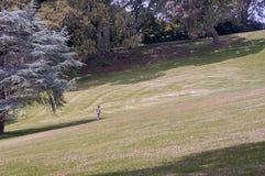 Um homem solitário em um prado da grama Fotografia de Stock