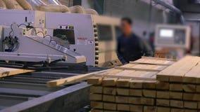 Um homem trabalha em uma serração, uns trabalhos em uma serração moderna Fábrica de woodworking interior industrial vídeos de arquivo