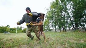 Um homem treina seu cão para executar o comando do salto e para morder sua mão video estoque