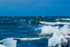 Um iceberg que está sendo quebrado-se pelas ondas Fotos de Stock Royalty Free