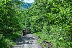 Um indivíduo com uma menina em uma estrada de floresta Imagem de Stock Royalty Free