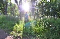Um indivíduo novo em um terno cinzento dos esportes está oposto ao sol entre foto de stock