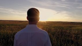 Um indivíduo novo está andando no campo no por do sol vídeos de arquivo