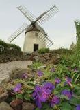 Um inGraciosa velho do moinho de vento, Açores Fotografia de Stock Royalty Free