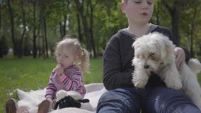 Um irmão mais idoso e a irmã pequena sentam-se na cobertura no parque verde bonito com o cão macio branco video estoque