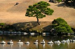 Um jardim do zen em Kyushu - Japão imagens de stock royalty free