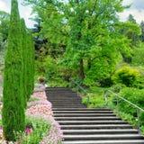 Um jardim e outras plantas, uma escadaria e uma cachoeira na ilha do lago Constance Mainau, Alemanha foto de stock