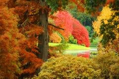 Um jardim no outono fotos de stock