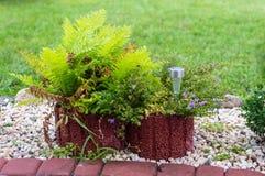 Um jardim ornamental pequeno na frente da casa com as plantas, os seixos decorativos e as lâmpadas postos pela energia solar imagem de stock royalty free