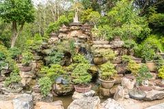 Um jardim ou um bonsai pequeno da árvore decorado belamente imagens de stock