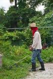 Um jardineiro está aparando a grama com o lawnmower no parque Imagem de Stock