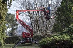 Um jardineiro move pela sua a cesta seguida Fotos de Stock
