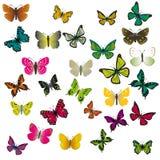 Um jogo de borboletas coloridas Imagens de Stock Royalty Free