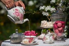 Um jogo de chá Fotos de Stock