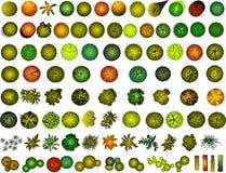 Um jogo de símbolos da copa de árvore Imagens de Stock Royalty Free