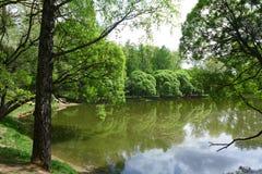 Um lago Imagens de Stock Royalty Free