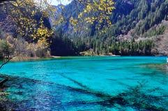 Um lago azul e fósseis das árvores no lago Substância mineral Foto de Stock Royalty Free