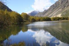 Um lago bonito com as árvores amarelas na praia Fotos de Stock Royalty Free