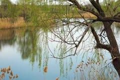 Um lago calmo do outono reflete a paisagem bonita fotografia de stock