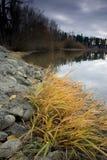 Um lago calmo no outono. imagem de stock royalty free