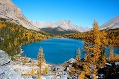 Um lago colorido Imagens de Stock