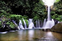 Um lago com cachoeiras Imagens de Stock